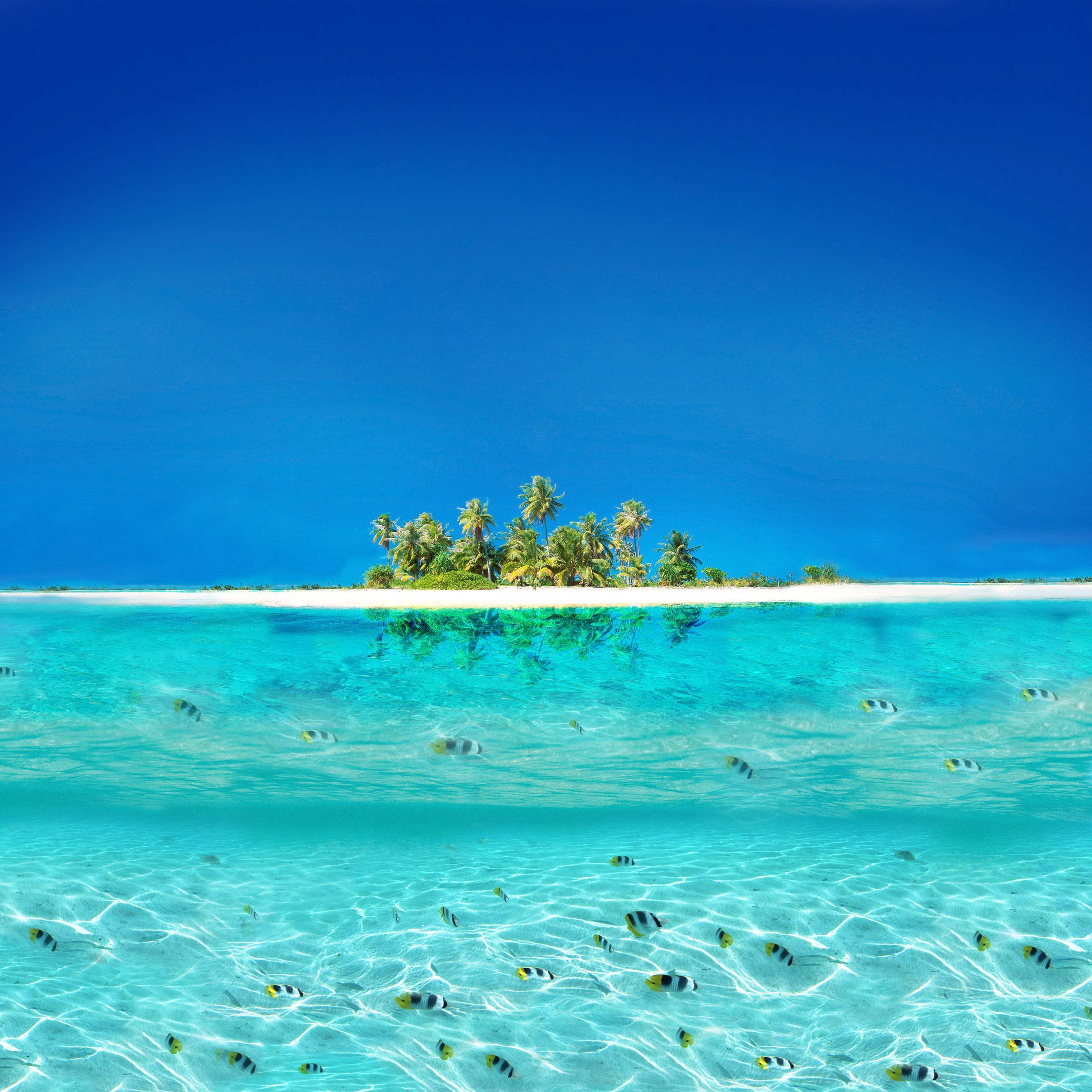 Background_island1